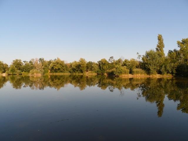 Horgásztó Pest megye